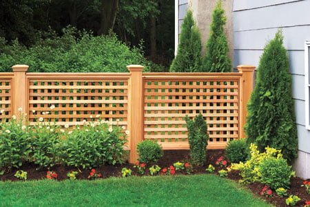 Lattice Fence Front Yard